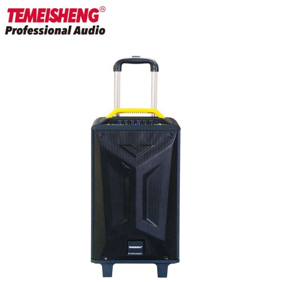 Temeisheng 10inch Wooden High Power Karaoke Trolley Speaker Box