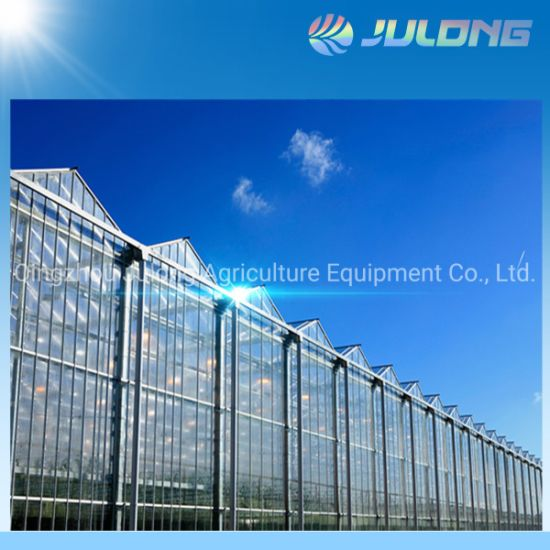 High Quality Hydroponics Growing System Greenhouse