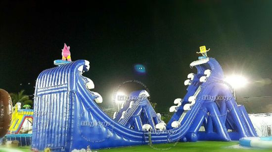 Attractive Hot Exciting Giant Adult Inflatable Slide for Amusement Park pictures & photos