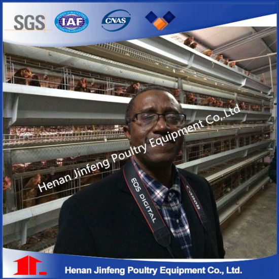 Battery Hen Cages (BDT024-JF-24) pictures & photos