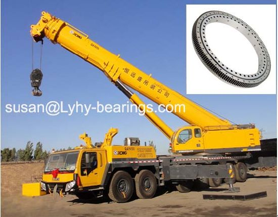 Torriani Gianni Slewing Ring Bearing Turntable Bearing with Internal Gear I. 1166.20.00. B for Truck Cranes