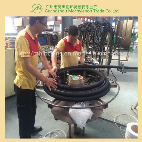 Wire Braided Hydraulic Hose (EN853-2SN-1-1/2) pictures & photos