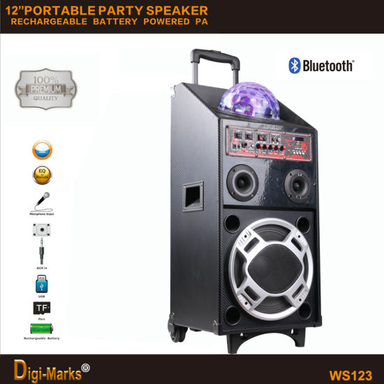 China Factory Multi-Functional Party Reunion Dance Wireless Bluetooth Trolley Speaker pictures & photos