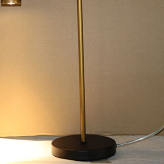 Living Room Decorative Bronzen Iron Reading Table/Desk Lamp pictures & photos