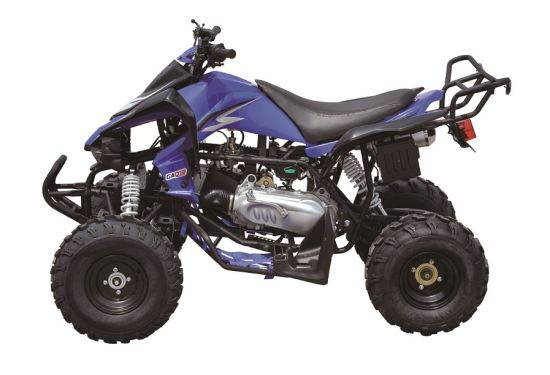 250cc Quad Bike, Racing ATV EEC Approval with 10inch Wheels pictures & photos