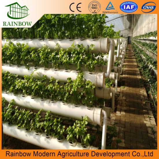 Tremendous China Hydroponics And Commercial Greenhouse For Desert And Home Interior And Landscaping Oversignezvosmurscom