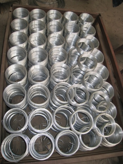 Hot Dipped Galvanized Iron Wire Galvanized Iron Wire Binding Wire pictures & photos