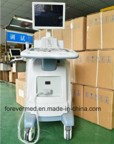Hot Sale Top Quality Digital B/W Ultrasound System