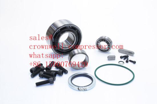 1622311043 1622311033 Atlas Copco Gear Motor C111