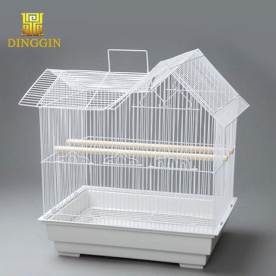 Amazing Breeding Beautiful Bird Cages