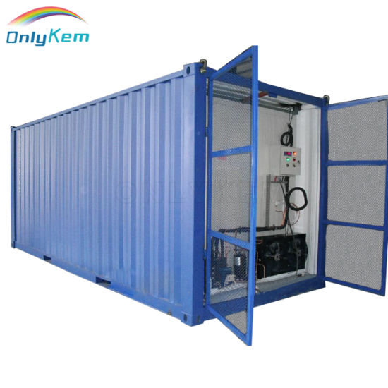 20FT / 40FT / 40 Hq New or Used Reefer Container Refrigerated Container for Sales From China