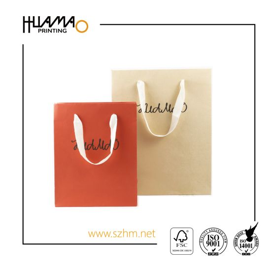 Retail Bag Promotional Gift Ping Carrier Paper