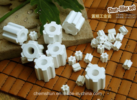 99% Alumina Ceramic Fluted Ring as Catalyst Carrier/ Chemical Packing pictures & photos