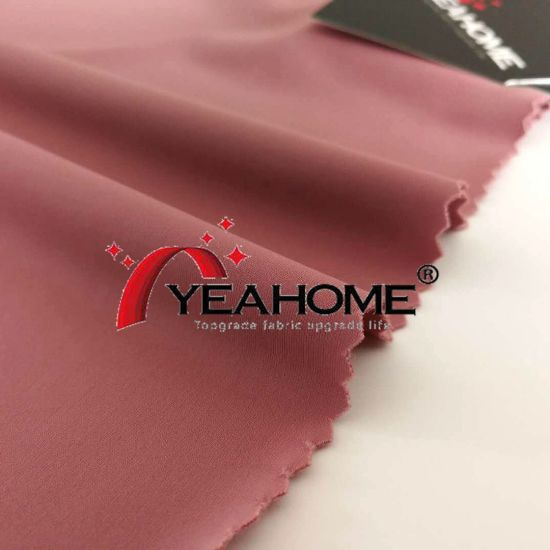 Anti Pilling Nylon Matte Tricot Fabric for Car Cover pictures & photos