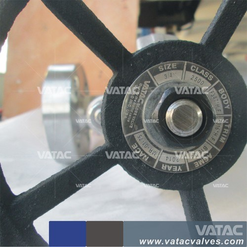 API Std Extended Bonnet Forged Gate Valve pictures & photos