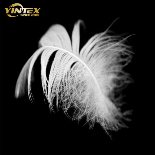 Feather Home Textile 2-4 Cm White Duck Feather