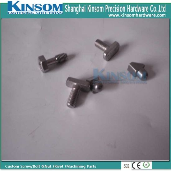 Special Stainless Steel T Head Bolt of Speical Metal Fasteners pictures & photos