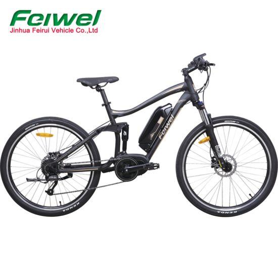 Hybrid Full Suspension Mountain E Bike for Sales (FR-TDB20Z)