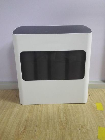 100g, 200g, 300g, 400g, 500g, 600g RO Water Filter