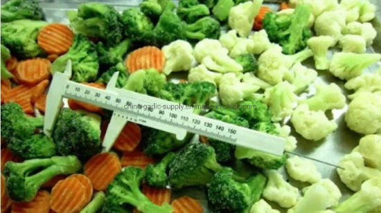 Frozen Mixed Vegetables and IQF Mixed Pepper Packaging