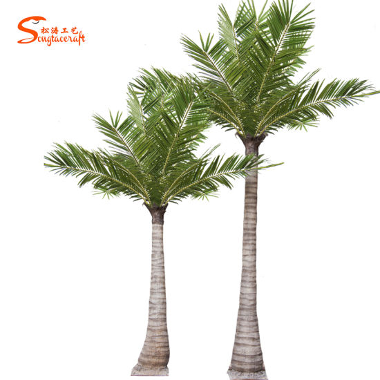 Evergreen Tropical Artificial Giant Outdoor Decorative King Coconut Palm Tree Pictures Photos