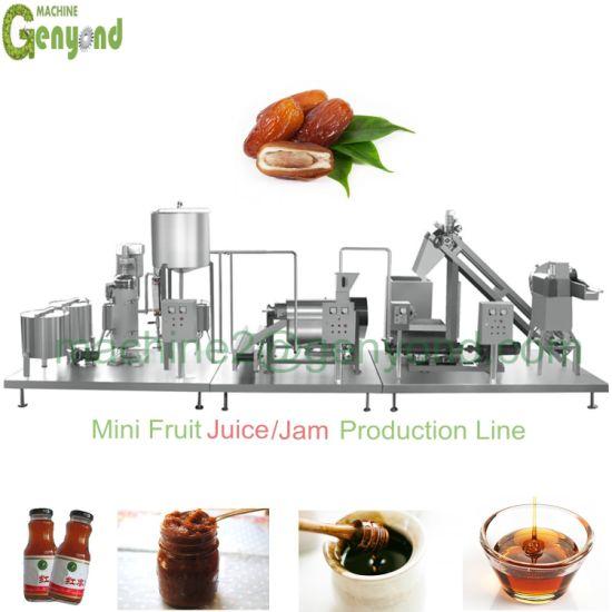 Full Set Saudi Arabia Date Paste Syrup Honey Machinery Production Line