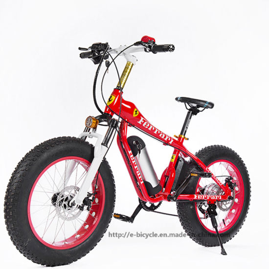 Hot 20inch Aluminium Snow, Beach, Electric Bike with Ce Approval