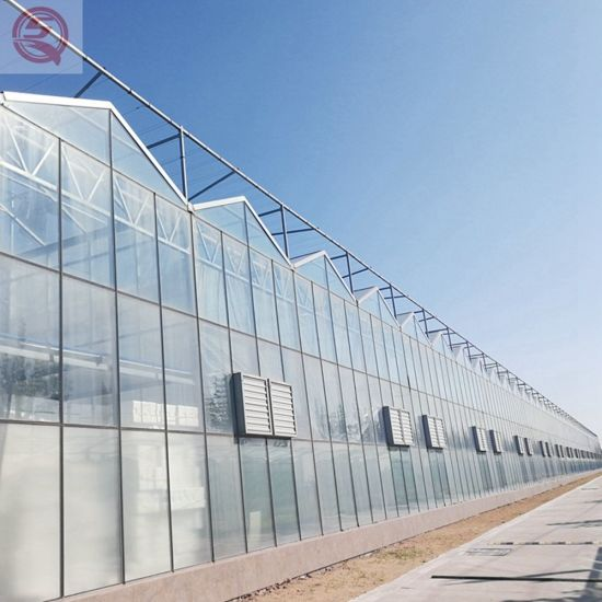 Venlo Polycarbonate/PC Sheet Agricultural Anti-UV Greenhouse for Vegetables/Flowers/Fruits/Tomato/Mushroom/Hydroponics Growing System/Eco-Restaurant