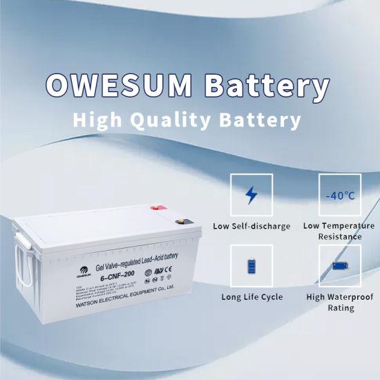 High Quality Customized Sealed Lead Acid Gel Energy Storage Battery