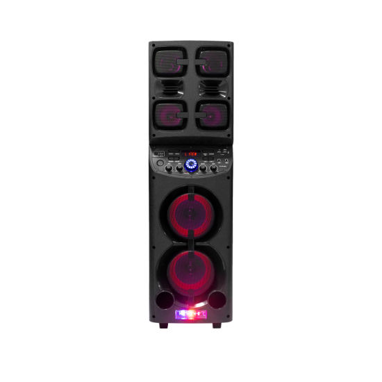 1000W Double 10 Inch Home Theatre Portable System Active DJ Speaker Box with 2 Tweeters