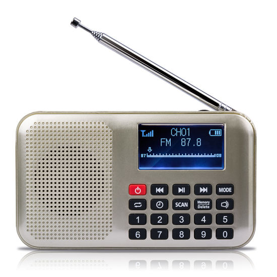 Portable FM Radio L-228 with LCD Display
