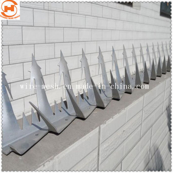 China Galvanized Barbed Wire Razor Wire Mesh Wall Spike - China Wall ...