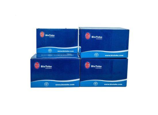 Biobase DNA & Rna Extraction Machine, PCR Instrument