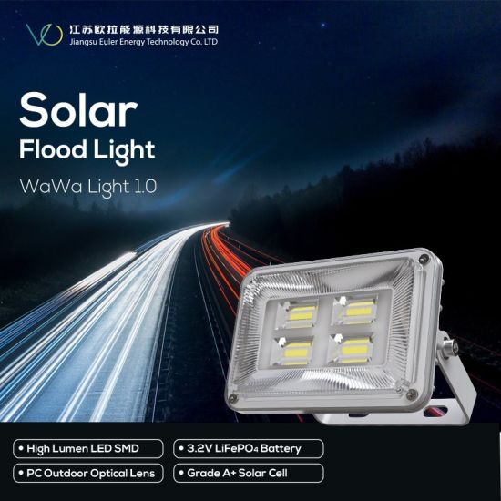 China Professional Outdoor LED Light for Whole Night Lighting