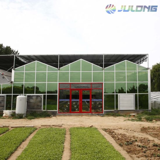 Roof Covered Vanlo Intelligent Glass Greenhouse with Nft Hydroponics Substrate Coconut Growing