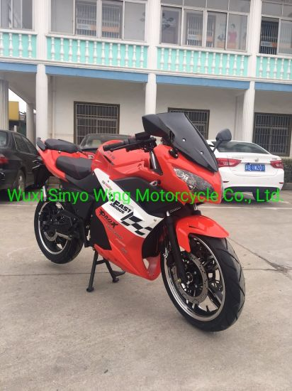 Skyline 1000W& 1500W& 2000W & 2500W Est E-Bike & E-Scooter & E-Motorcycle Lithium Battery Racing Motorcycle