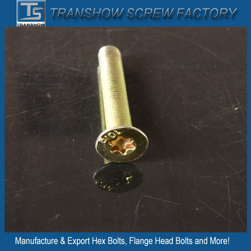 China Supplier Yellow Zinc Plated Torx Head Set Screws and Nuts pictures & photos