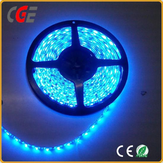 Dc12v 24v Ce Roved Flexible Led Strip Light Best Price Holiday Lighting