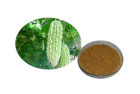 Natural Bitter Melon Extract Powder Balsam Pear Extract Plant Extract