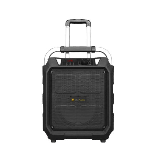 PT-10A Bluetooth Portable Trolley 10 Inch 100W OEM Guangzhou Speaker