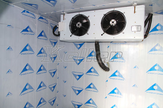 30 Cubic Meter Chiller to Keep Fresh Fruit/ Vegetable pictures & photos