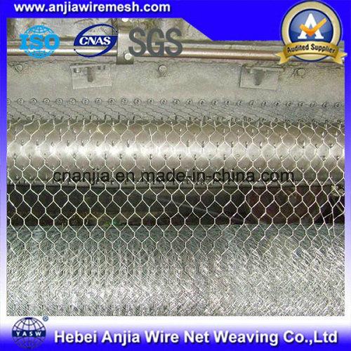 Coated Galvanized Hexagonal Wire Netting Chicken Mesh