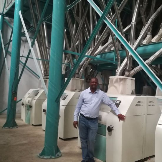 Zimbabwe Running 90tons Maize Mill pictures & photos
