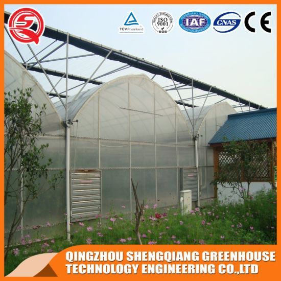 Agriculture Productive PE/Plastic Film Hydroponic Growing Garden Greenhouse for Sale
