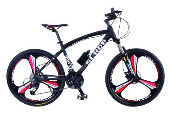 2019 Hot Suspension Fork Disc Brake Bicycle Mountain Bike (SL-MTB-009)