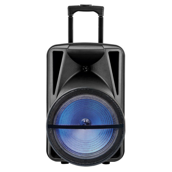 15 Inch Active Stage Powerful Wireless Trolley Speaker Sound Box