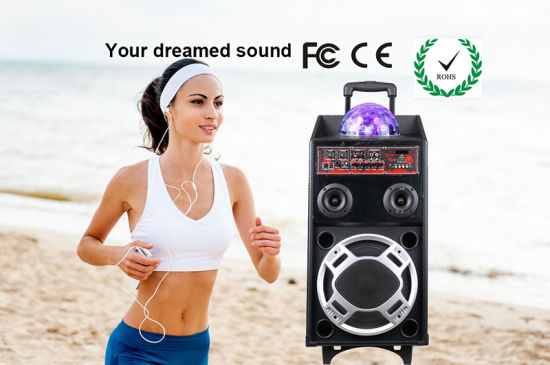 Ce Portable Wireless Amplifier Multi-Functions PA Speaker pictures & photos