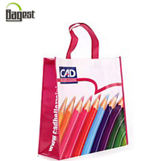 Fashion Design Low Price Laminated PP Non Woven Bag for Shopping pictures & photos