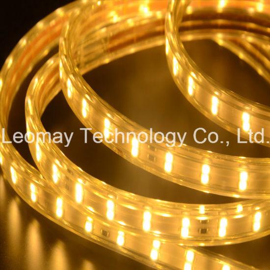 China Wholesale Price AC220V SMD3528 LED Ribbon Lights Strip Lights