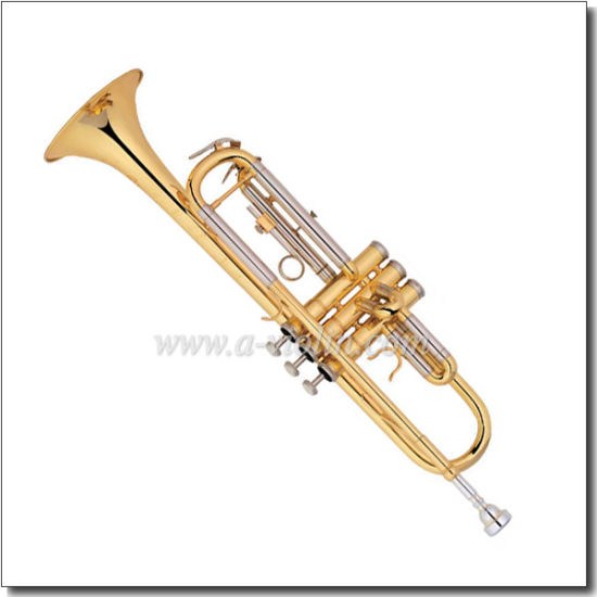 Gold Epoxy Lacquer/Silver Plated Finish China Trumpet Model